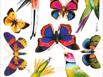 イギリス製クロモス 蝶と鳥#1 ラメなし DA-CHER088の画像