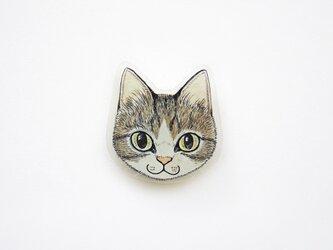 猫顔プラバンブローチ(キジシロ)の画像