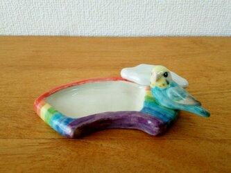セキセイ・レインボー♀と虹のトレイ(陶器)の画像