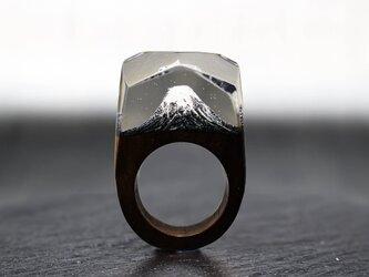 【送料無料】Fuji~Resin Wood Ring~の画像