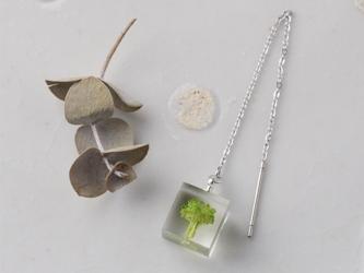 ブロッコリーのアメリカンピアス 片耳用(野菜, レジン, ステンレス, 送料無料)の画像