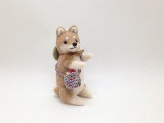 お出かけ柴犬さん(3)の画像