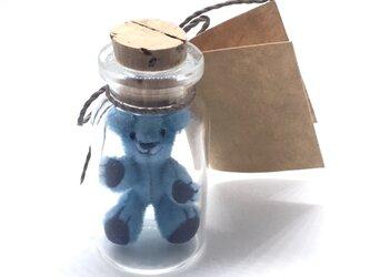 2017年6月2日 Bottled Bearの画像
