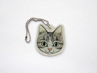 猫顔プラバンチャーム(サバシロ)の画像