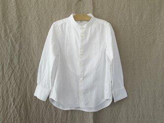 カディコットンイカ胸シャツ/110cmの画像
