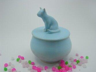 アイスブルー・キャンディーBox・ニャンコー11の画像