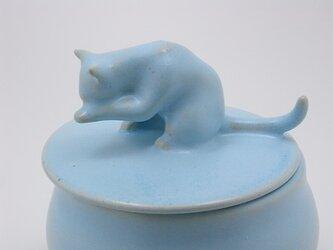 アイスブルー・キャンディーBox・ニャンコー13の画像