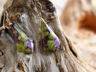 Stichtite earrings スティヒタイト(アトランティサイト)のピアス/イヤリング 14KGFの画像