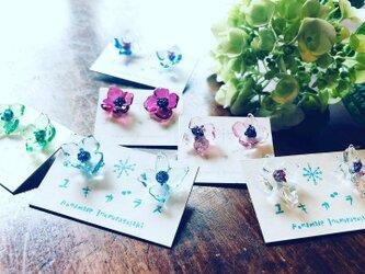 ガラスの紫陽花ピアス(受注製作)の画像