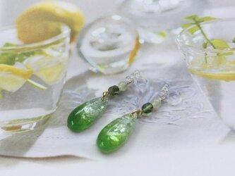 貝殻の入ったグリーンカラーのしずくイヤリング(ピアス変更可)の画像