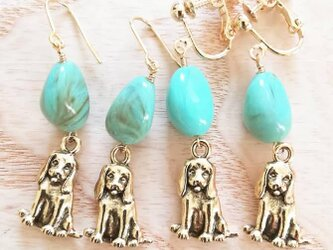 cute puppy♡turquoiseの画像