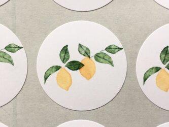 レモンの水彩画のシールの画像