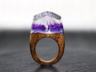 【送料無料】Amethyst World ~Resin Wood Ring~の画像