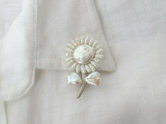 真珠の小花の画像