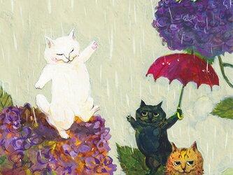 カマノレイコ オリジナル猫ポストカード「あじさい」2枚セットの画像