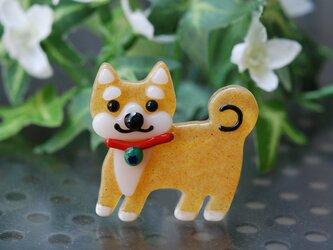 可愛い柴犬ブローチの画像