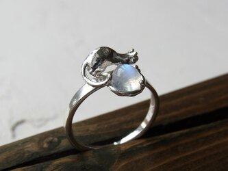 ムーンストーンと猫 * MoonStone & Cat Ringの画像