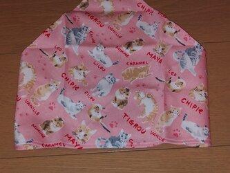ハンドメイド 子供用三角巾 ネコ柄   の画像
