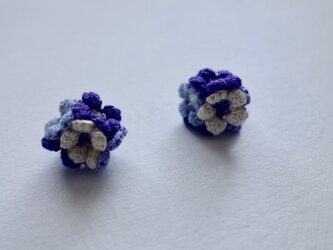 bouquet blue mixの画像