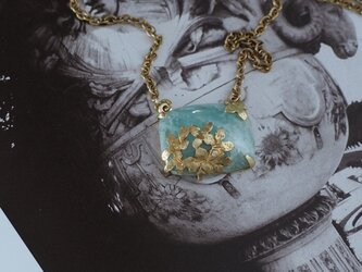 ノリウツギ アクアマリンの画像