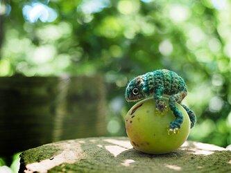 小さな小さなカエル(深緑)の画像
