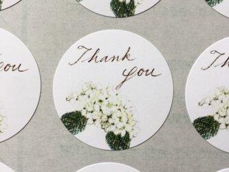 白い紫陽花のサンキューシールの画像