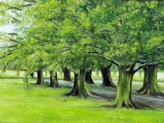 緑の小道の画像