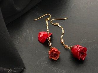 "FRACTION ""Swing red rose""の画像"