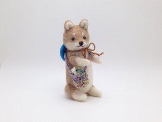 お出かけ柴犬さん(4)の画像