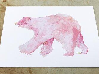 【おためしセット】ポストカード【ピンクのしろくま】+ バッジ or マグネット1個の画像