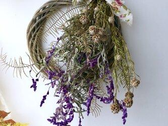 Sage wreath Dryflowerの画像