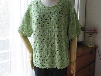 グリーンの半袖セーターの画像