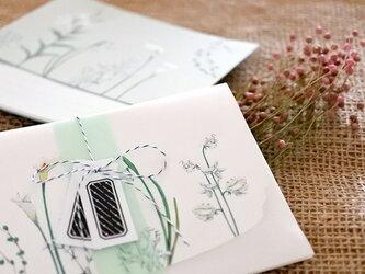 白い花たちのレターセットの画像