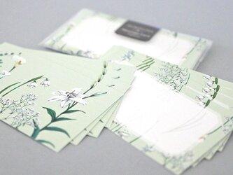 白い花たちのメッセージカードの画像