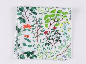 ハンカチ / floraの画像