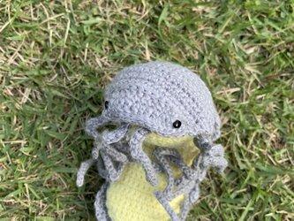 【受注製作】ダンゴムシのあみぐるみ(ispd0001)の画像