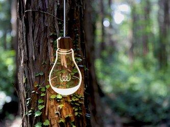 LiLi ライライ 小さな間接照明 【電球色】の画像