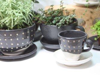 コーヒーカップ型植木鉢(ミニ)(受け皿付き)   J626の画像