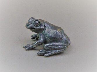 ふりむく蛙の画像