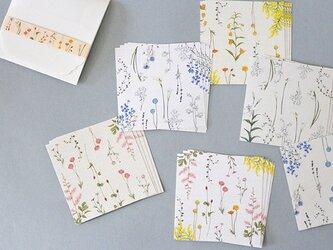 花たちの彩メモ便箋セット(ケース付)の画像