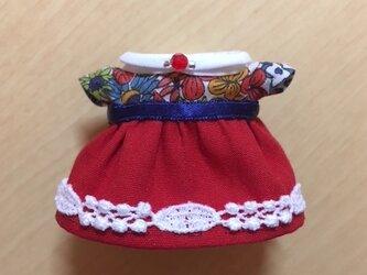 姫の休日ドレスの画像