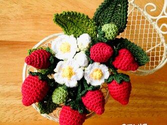 苺のコサージュ・西洋イチゴの画像