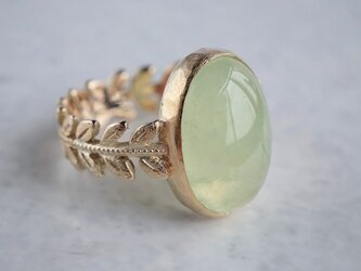 Prehnite rose leaf ring [OP730K10YG]の画像