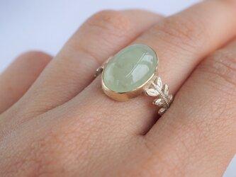 Prehnite rose leaf ring [OP730K10YG]の画像