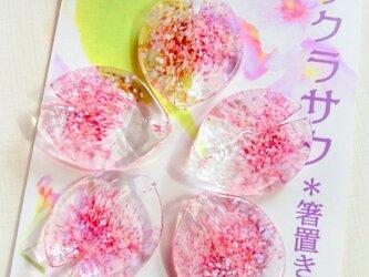 桜のはしおき「サクラサク」クリア5pの画像