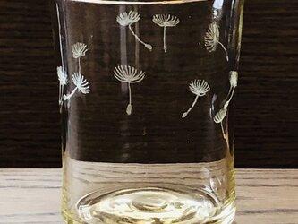 たんぽぽの綿毛グラス の画像