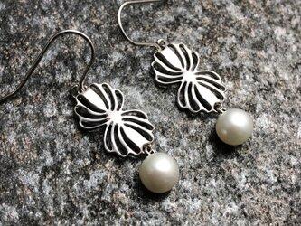 "Twin shell flower silver pierce ""小さな貝とパールのピアス""の画像"