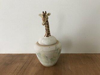 カノプス壺 キリンの画像