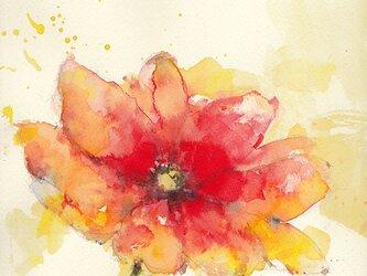 Flower 1 (額縁付き)の画像