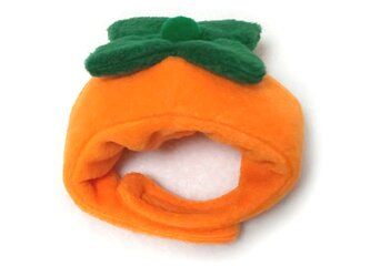 犬猫用コスプレ 柿のかぶりもの(帽子)の画像